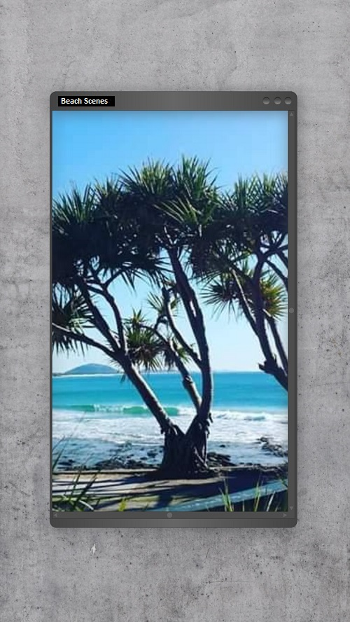 My Ocean Trees at Alex Headlands photo makes a great wallpaper background for your cellphone