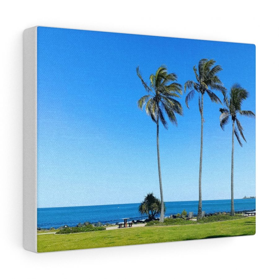 This Palm Trees at Bagara Beach Canvas is available to buy at the Beach Scenes online store.
