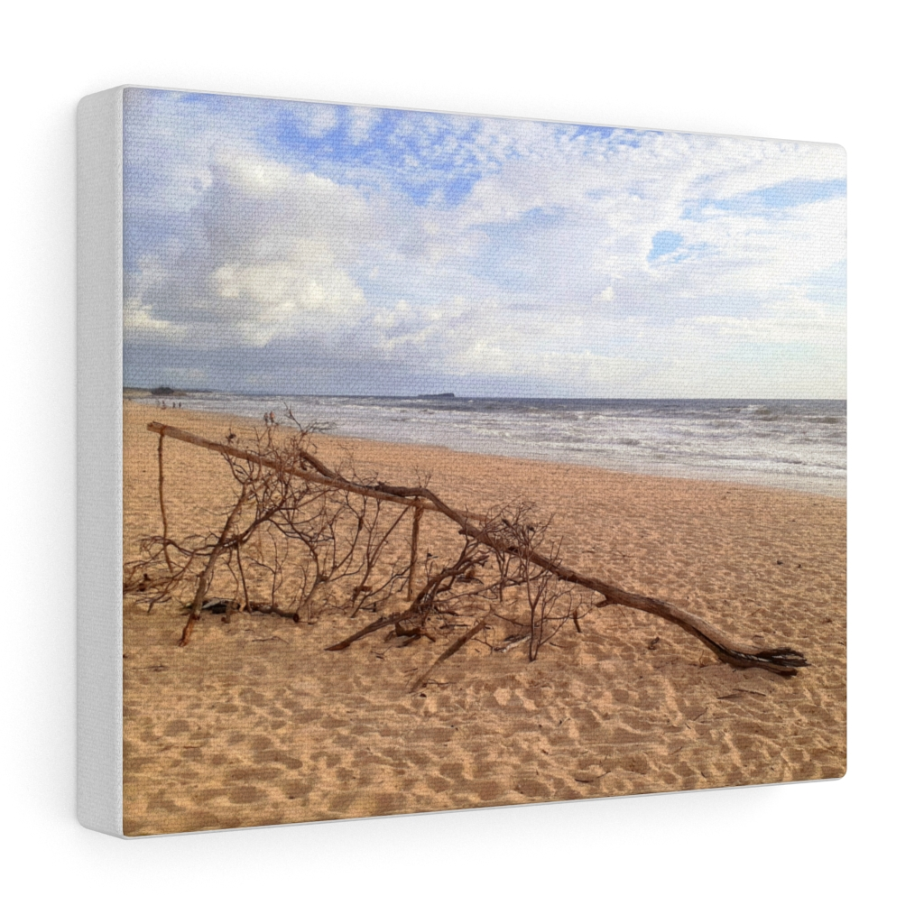 This Driftwood at Beach Canvas is one of many cool beach wall art pieces we have available for you to buy for your home deoor.