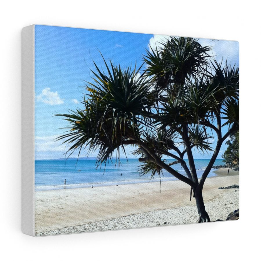 This Pandanus Tree Canvas is one of many beach themed wall art pieces you can buy from the Beach Scenes online store.