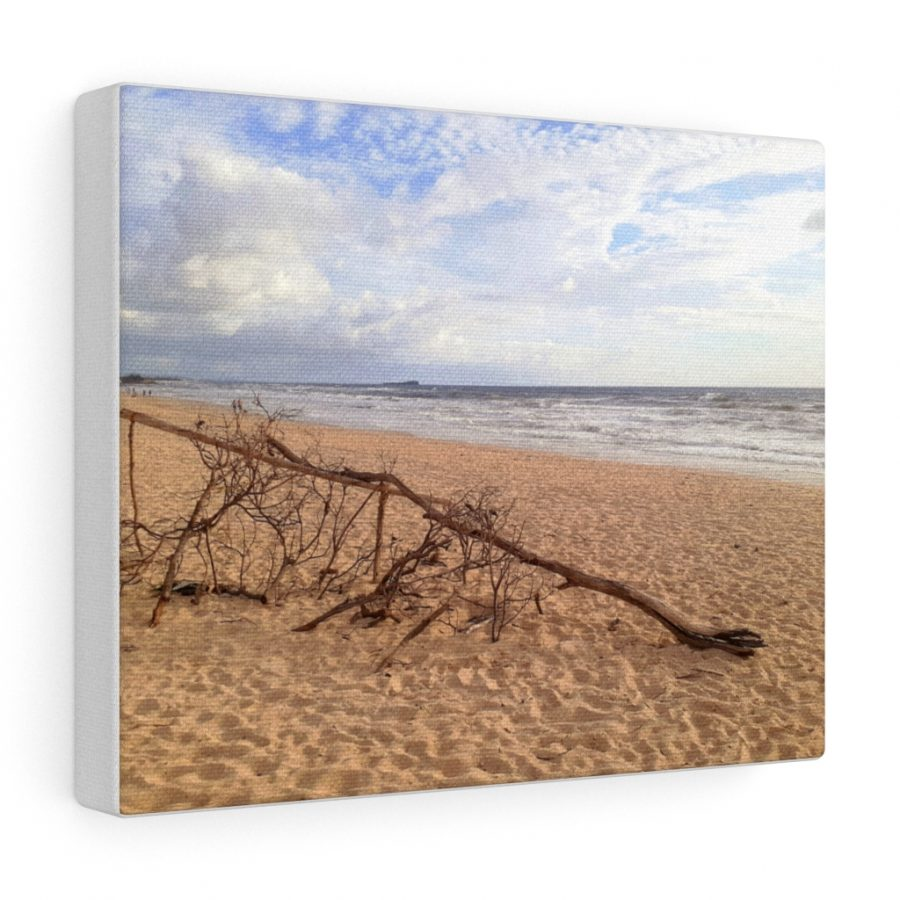 This Driftwood at the Beach Canvas is one of many beach themed wall art pieces you can buy from the Beach Scenes online store.