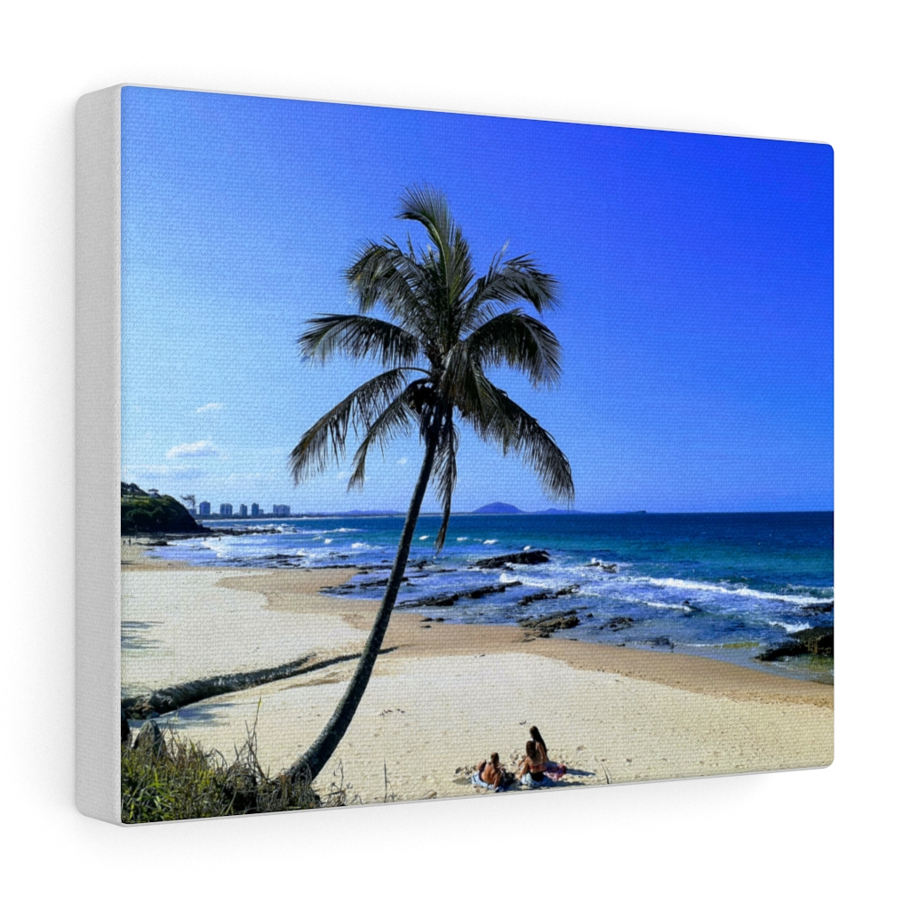 This Palm Tree at Mooloolaba Beach is one of many cool beach wall art pieces we have available for you to buy for your home decor.