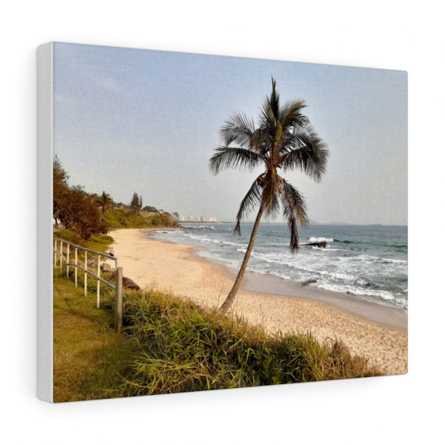 This Windswept Palm Tree at Mooloolaba Beach is available to buy from the Beach Scenes online store!