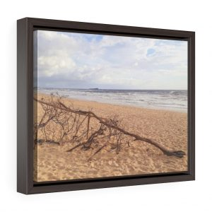 This Driftwood Framed Canvas is available to buy from the Beach Scenes online store.