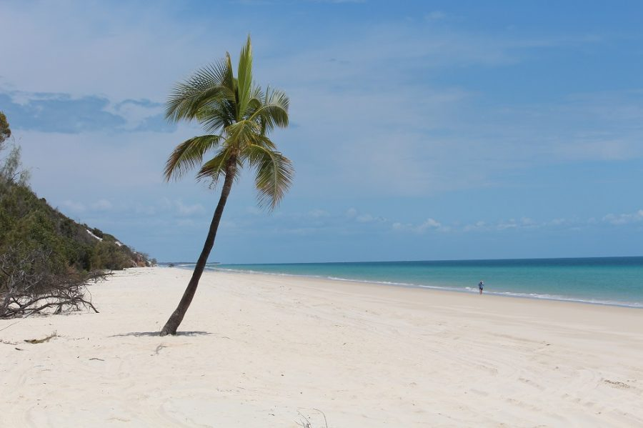 75 Mile Beach on Fraser Island in Queensland