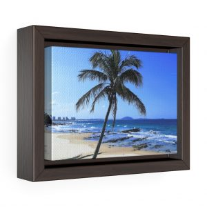 This Palm Tree Framed Canvas is available to buy from Beach Scenes online store with worldwide shipping.