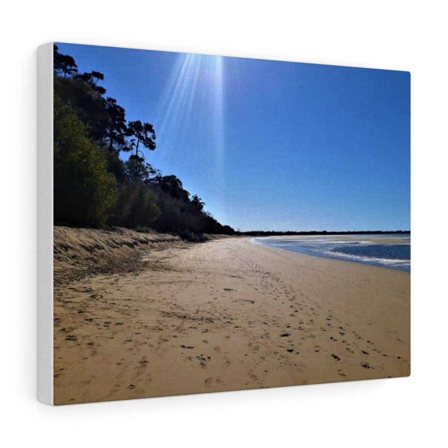 You can buy this Scarness Beach at Hervey Bay Canvas at Beach Scenes online store.