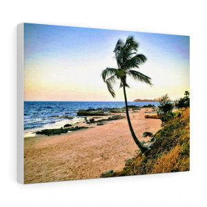 You can buy this Windy Palm Tree at Mooloolaba Beach Canvas at Beach Scenes online store.