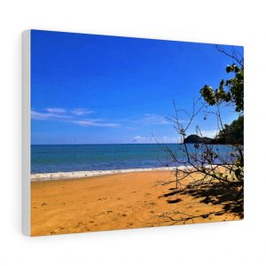 You can buy this Buchan Point Beach Canvas at Beach Scenes online store.